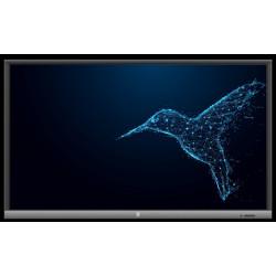 AVTek Monitor TouchScreen 5 LITE 75 cali + Komputer OPS i3