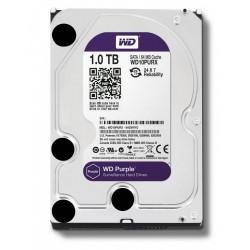 Western Digital Purple WD10PURZ 1TB 3,5'' 64MB  SATAIII